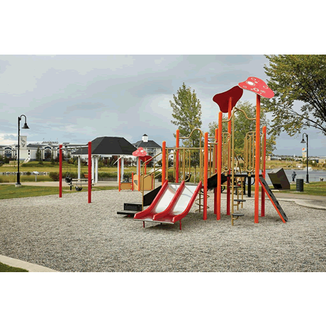 PlayFit Squirrel School Age Playground